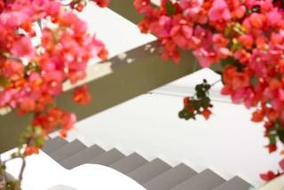 gallery porto klaras garden with beautiful flowers