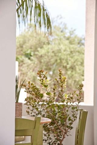 gallery porto klaras beautiful garden with flowers and plants