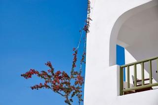 gallery porto klaras minimal suites with beautiful flowers
